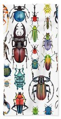 Beetle Collection Hand Towel by Kelly Jade King