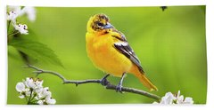 Bird And Blooms - Baltimore Oriole Hand Towel by Christina Rollo