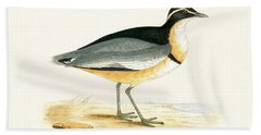 Black Headed Plover Hand Towel by English School