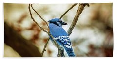 Blue Jay Hand Towel by Robert Frederick