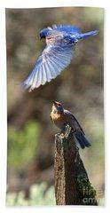 Bluebird Buzz Hand Towel by Mike Dawson