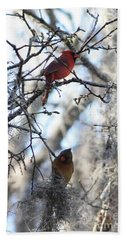 Cardinals In Mossy Tree Hand Towel by Carol Groenen