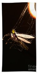 Caught Prey Hand Towel by Jorgo Photography - Wall Art Gallery