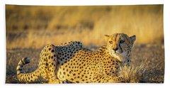 Cheetah Portrait Hand Towel by Inge Johnsson