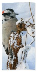 Downy Woodpecker  Hand Towel by Ken Everett