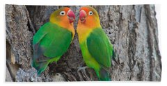 Fischers Lovebird Agapornis Fischeri Hand Towel by Panoramic Images