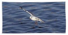 Flying Gull Hand Towel by Michal Boubin
