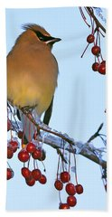 Frozen Dinner  Hand Towel by Tony Beck