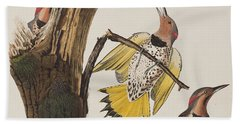 Golden-winged Woodpecker Hand Towel by John James Audubon