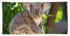 Good Morning Koala Hand Towel by Jamie Pham