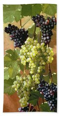 Grapes Hand Towel by Edward Chalmers Leavitt