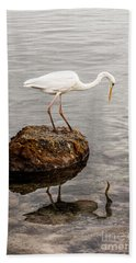 Great White Heron Hand Towel by Elena Elisseeva
