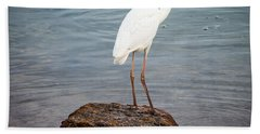 Great White Heron With Fish Hand Towel by Elena Elisseeva
