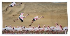Greater Flamingos Phoenicopterus Hand Towel by Panoramic Images