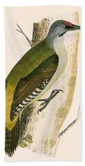 Grey Woodpecker Hand Towel by English School