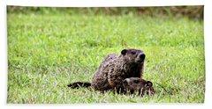 Groundhog Alert Hand Towel by Kathy Krause