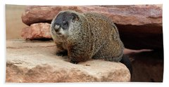 Groundhog Hand Towel by Louise Heusinkveld