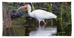 Ibis Drink Hand Towel by Mike Dawson