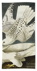 Iceland Or Jer Falcon Hand Towel by John James Audubon