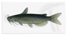 Illustration Of A Channel Catfish Hand Towel by Carlyn Iverson