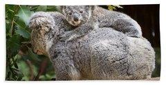 Koala Joey Piggy Back Hand Towel by Jamie Pham