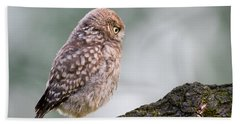 Little Owl Chick Practising Hunting Skills Hand Towel by Roeselien Raimond