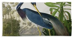 Louisiana Heron Hand Towel by John James Audubon