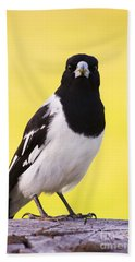 Mr. Magpie Hand Towel by Jorgo Photography - Wall Art Gallery