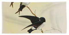 Nepal House Martin Hand Towel by John Gould