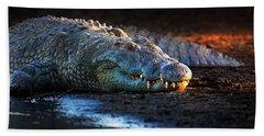 Nile Crocodile On Riverbank-1 Hand Towel by Johan Swanepoel