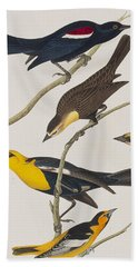 Nuttall's Starling Yellow-headed Troopial Bullock's Oriole Hand Towel by John James Audubon