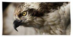 Osprey Hand Towel by Adam Romanowicz