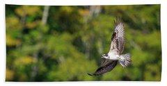 Osprey Hand Towel by Bill Wakeley