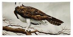 Osprey Sea Hawk Hand Towel by James Williamson
