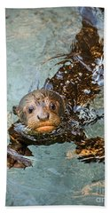 Otter Pup Hand Towel by Jamie Pham