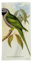 Parakeet Hand Towel by John Gould