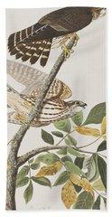 Pigeon Hawk Hand Towel by John James Audubon
