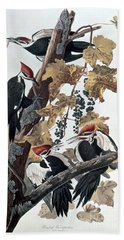 Pileated Woodpeckers Hand Towel by John James Audubon