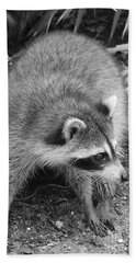 Raccoon - Black And White Hand Towel by Carol Groenen