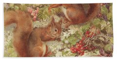 Red Squirrels Gathering Fruits And Nuts Hand Towel by Rosa Jameson