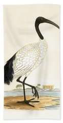 Sacred Ibis Hand Towel by English School