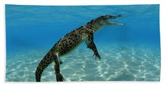 Saltwater Crocodile Hand Towel by Franco Banfi and Photo Researchers