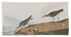 Semipalmated Sandpiper Hand Towel by John James Audubon