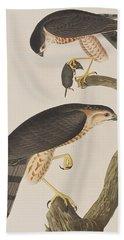 Sharp-shinned Hawk Hand Towel by John James Audubon