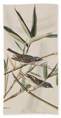 Solitary Flycatcher Or Vireo Hand Towel by John James Audubon