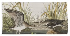 Solitary Sandpiper Hand Towel by John James Audubon