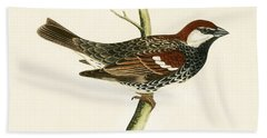 Spanish Sparrow Hand Towel by English School