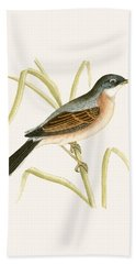 Spectacled Warbler Hand Towel by English School