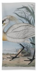 Spoonbill Hand Towel by John Gould