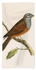 Striolated Bunting Hand Towel by English School